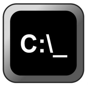 cl1-300x289